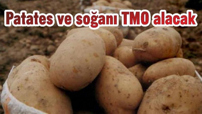 Patates ve soğanı TMO alacak