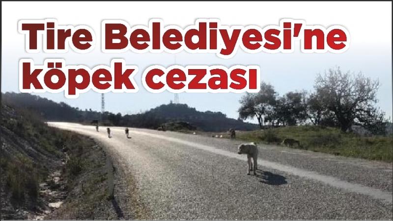 Tire Belediyesi'ne köpek cezası